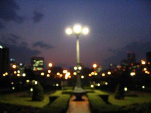 nakanoshima_lights.jpg