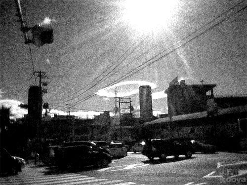 写真「sun」 by J.F.Kooya